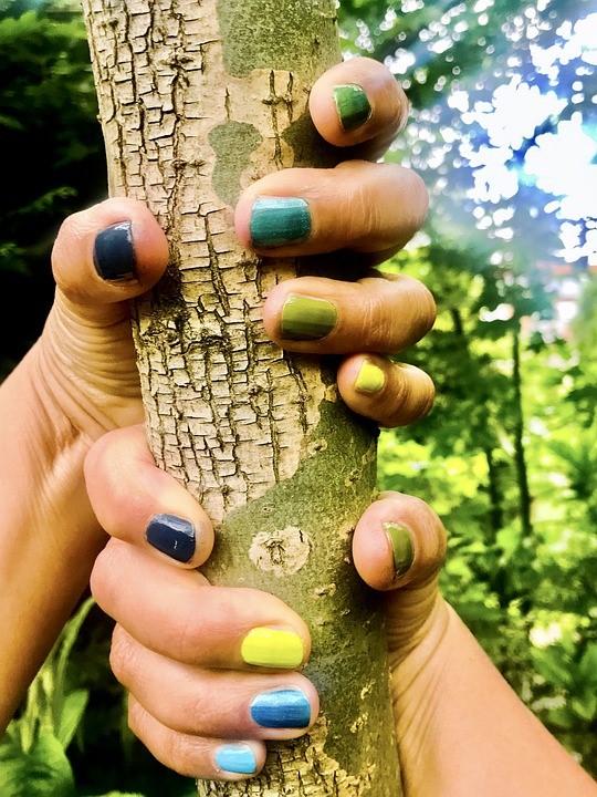 Organoleptycznie sprawdzamy drewno